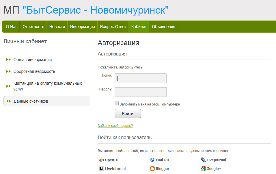 Бытсервис Новомичуринск - личный кабинет